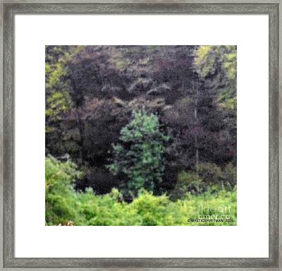 Prophecy 2012 Framed Print by Oberon   Ahura Star