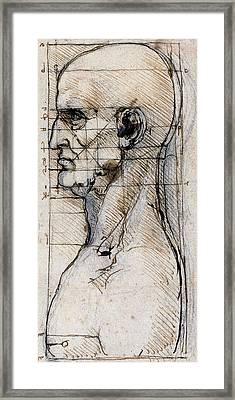 Proportions Of The Face Framed Print by Leonardo Da Vinci