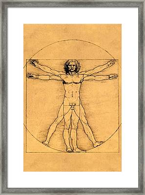 Proportions Of The Human Figure Framed Print