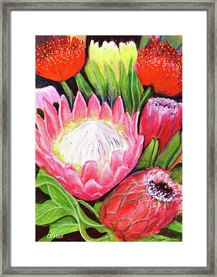 Protea Flowers #240 Framed Print by Donald k Hall