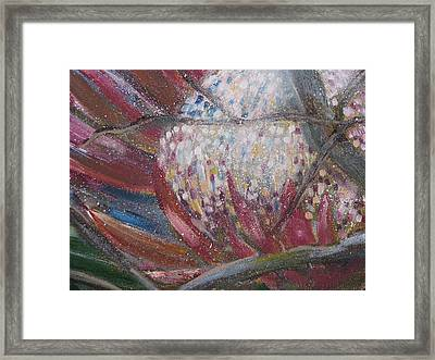 Protea Scent Framed Print by Penny Faulhammer