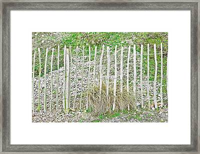 Protective Fence Framed Print by Tom Gowanlock