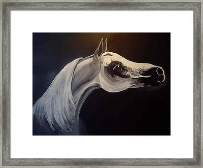 Proud Arabian Stallion Framed Print by Glenda Smith