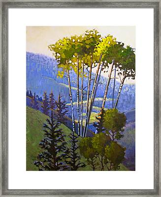 Proud Aspen Framed Print by Susan McCullough