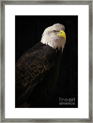 Proud Framed Print