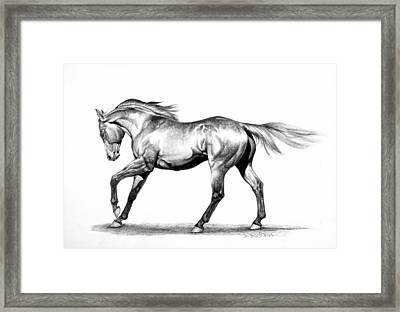 Proud Framed Print by Howard Dubois