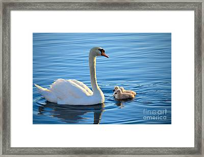 Proud Mother Framed Print by Deb Halloran