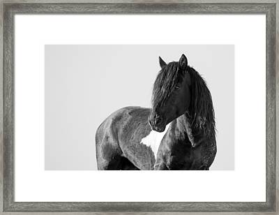 Proud Warrior Framed Print