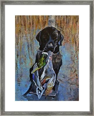 Pround Hunting Dog Labrador Retriever. Framed Print by Sun Sohovich