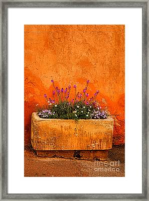 Framed Print featuring the photograph Provencal Melody by Olivier Le Queinec
