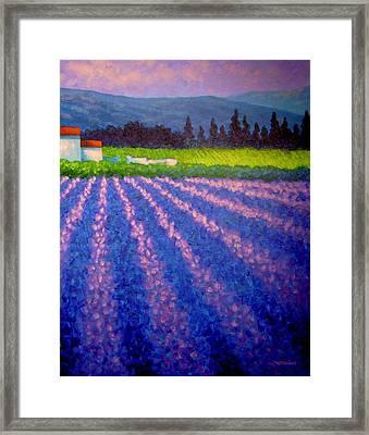 Provence Framed Print by John  Nolan