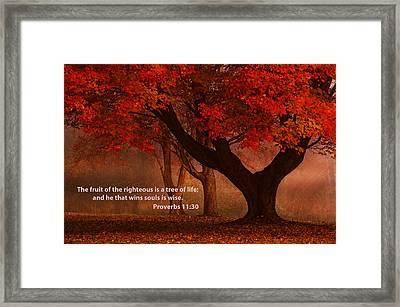 Framed Print featuring the photograph Proverbs 11 30 Scripture And Picture by Ken Smith