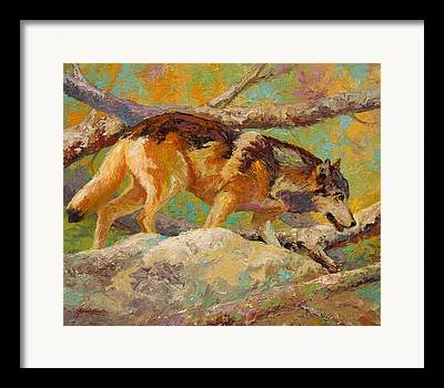 Prowler Paintings Framed Prints