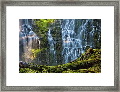 Proxy Falls Dappled In Light Framed Print by Mark Kiver