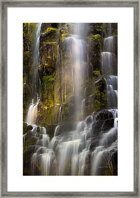 Proxy Falls Vertical Textures Framed Print by Leland D Howard