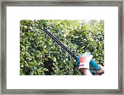 Pruning Machine Framed Print