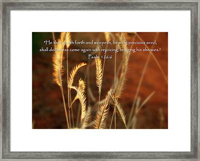 Psalm 126 6 Grain Framed Print by Cindy Wright