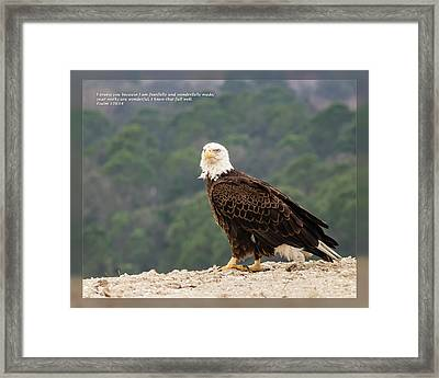 Framed Print featuring the photograph Psalm 139 14 by Dawn Currie