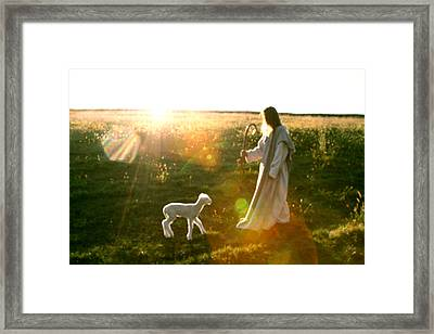 Standing In The Son Framed Print by Vienne Rea