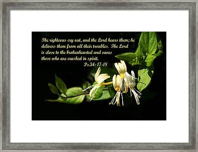 Psalms Scripture With Honey Suckle Flowers Framed Print by Linda Phelps