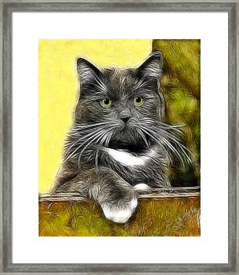 Pssst ... Where's The Treats Framed Print by Madeline  Allen - SmudgeArt