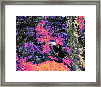 Psychedelic Eagle Framed Print by Wilbur Young