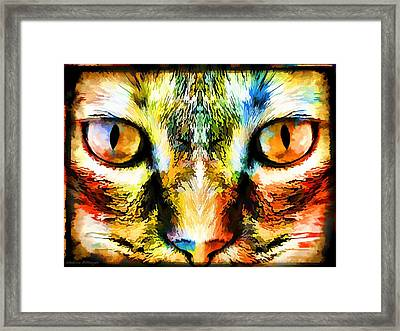Psychedelic Kitty Cat Framed Print