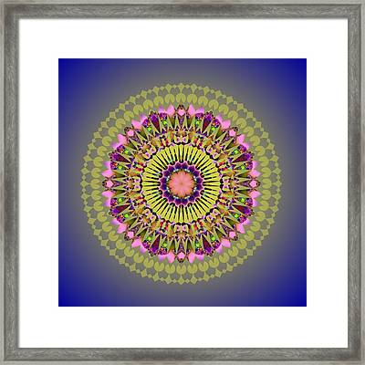 Psychedelic Mandala 001 A Framed Print