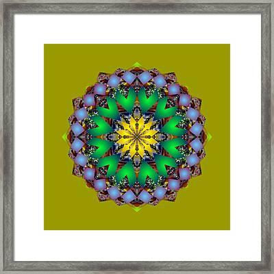 Psychedelic Mandala 003 A Framed Print