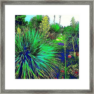 Psychedelic Yuccas. #plant #yucca Framed Print by Austin Tuxedo Cat