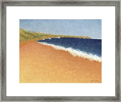 Pt. Reyes Beach Framed Print