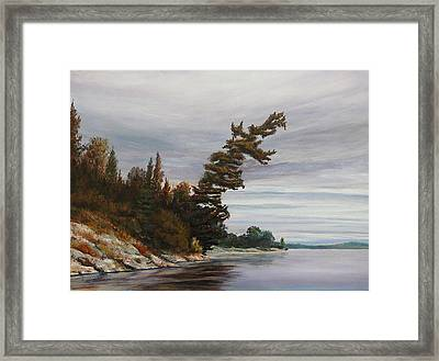 Ptarmigan Bay Framed Print