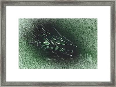 Pteranodon Longiceps Framed Print