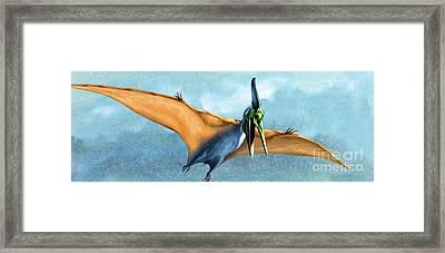 Pterosaur Prehistoric Bird Framed Print