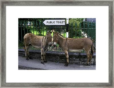 Public Toilet Framed Print