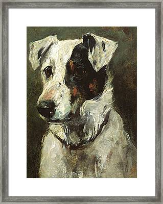 Puck Framed Print by John Emms
