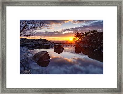 Puddle Paradise Framed Print