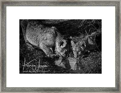 Framed Print featuring the photograph Puddle Time by Karen Lewis