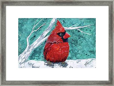 Pudgy Cardinal Framed Print