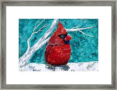 Pudgy Cardinal Framed Print by T Fry-Green
