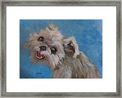 Pudgy Smiles Framed Print