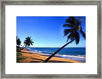 Puerto Rico Beach Framed Print by Thomas R Fletcher