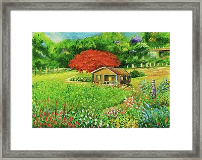 Puerto Rico Countryside Framed Print