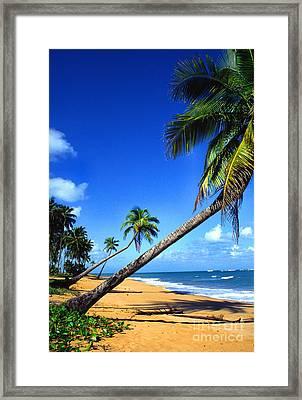 Puerto Rico North Shore Framed Print by Thomas R Fletcher