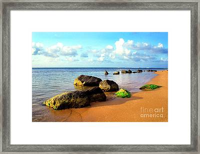 Puerto Rico Rio Grande Shoreline Framed Print by Thomas R Fletcher