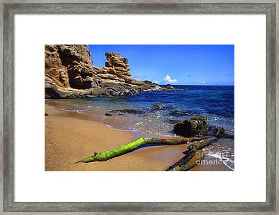 Puerto Rico Toro Point Framed Print
