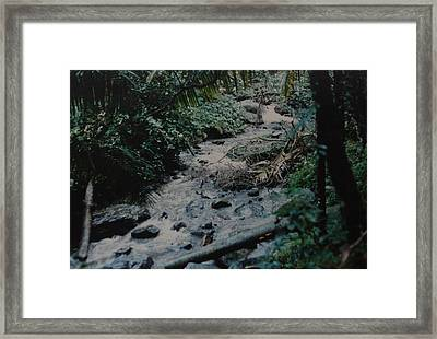 Puerto Rico Water Framed Print by Rob Hans
