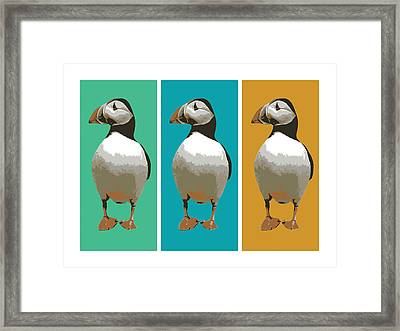 Puffin Trio Pop Art Framed Print by Michael Tompsett