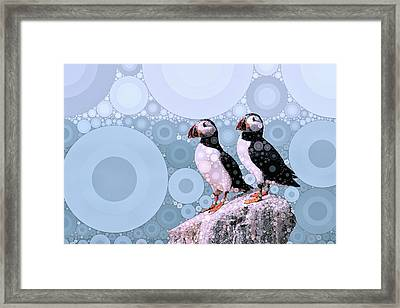 Puffins By The Sea Framed Print