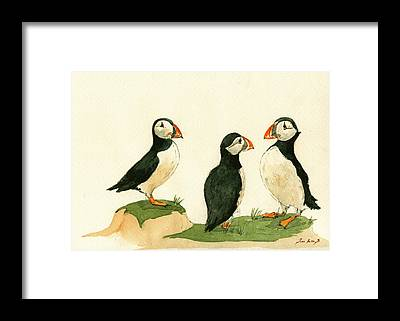 Sea Bird Framed Prints